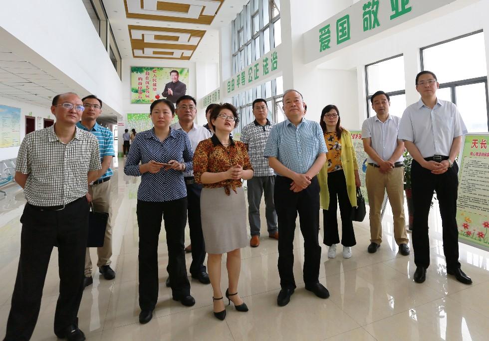 滁州市委常委、宣传部长李树深入我市调研文明创建工作