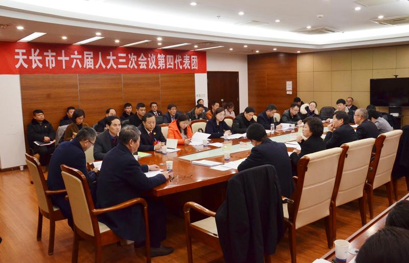 贺家平参加市十六届人大三次会议第四、第五代表团分团审议