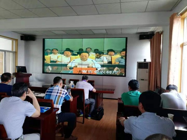 天长市组织收看全国非洲猪瘟防控工作视频会议