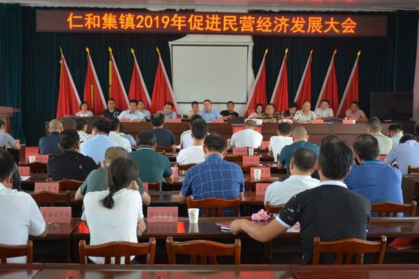 仁和集镇召开2019年促进民营经济发展大会 作者: 来源:仁和集镇