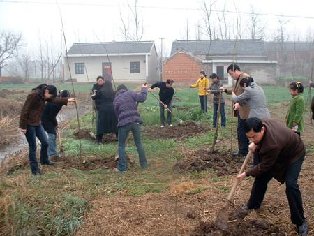 天长市城乡街道掀起义务植树活动高潮